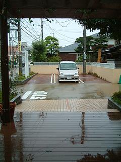 81116-2.JPG